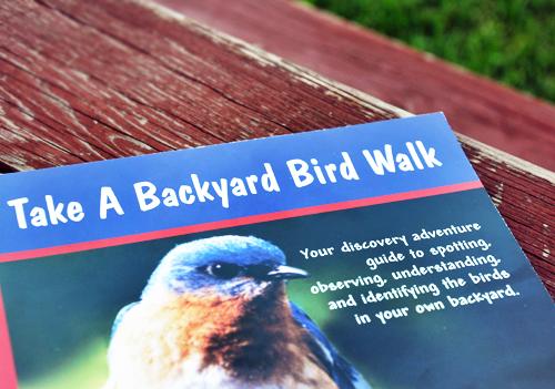 Birdwalk