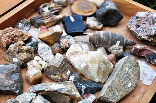 3.rocks