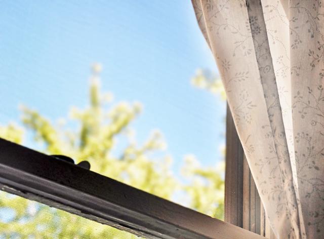Window2.2