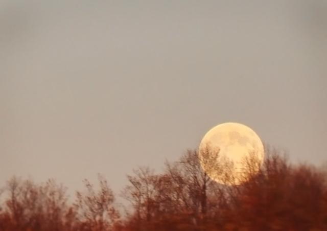 Moon_streek3