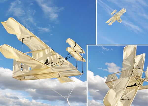 Plane.kite.comp