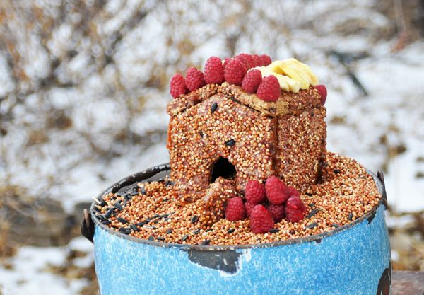 Little pink bird seed houses imagine childhood magic for Bird seed glue recipe