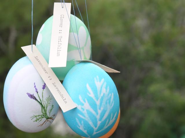 Botanical.eggs