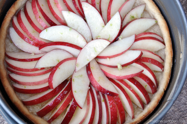 Ginger Lime Nectarine Tart Recipe via Imagine Childhood
