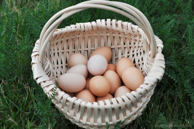 Egg.final.2