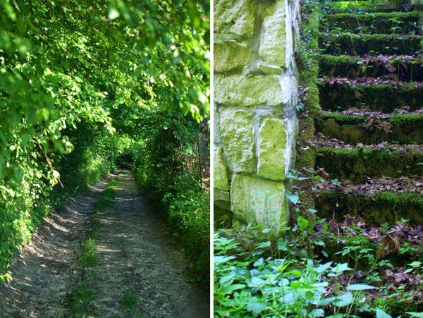 Nature S Way Wilmington Nc