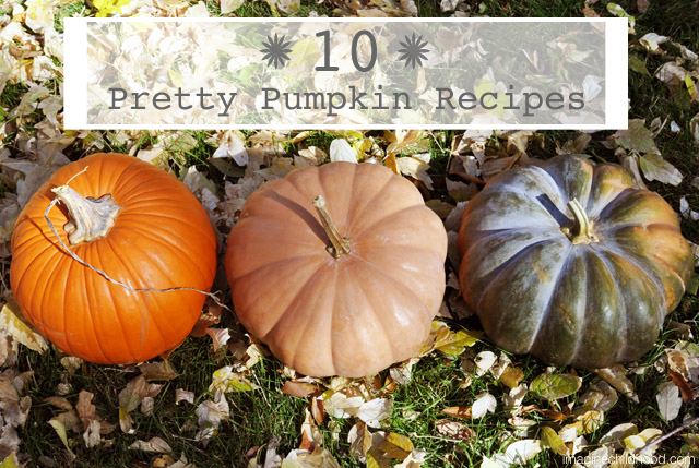 Pumpkin.recipes