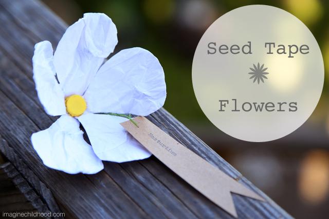 Seed.tape.nasturtium
