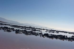 Salt.lake