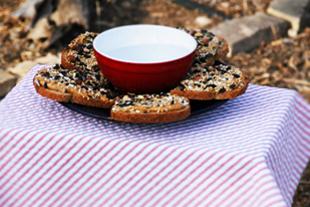 Bird.picnic.2