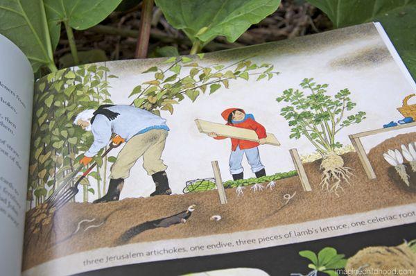 My Garden Stories