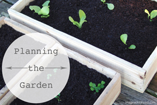 Garden Activities and Games for the Whole Family
