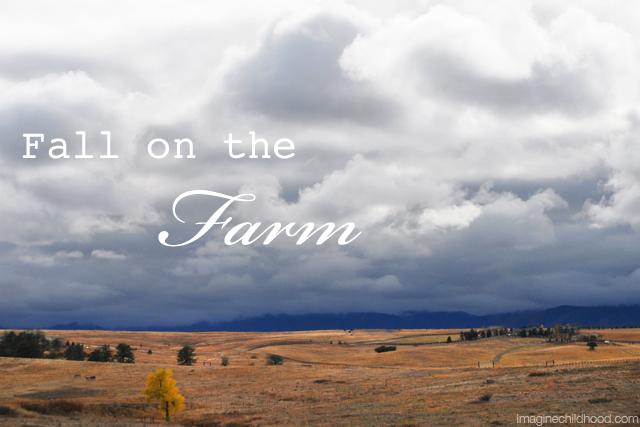 Fall.farm.2