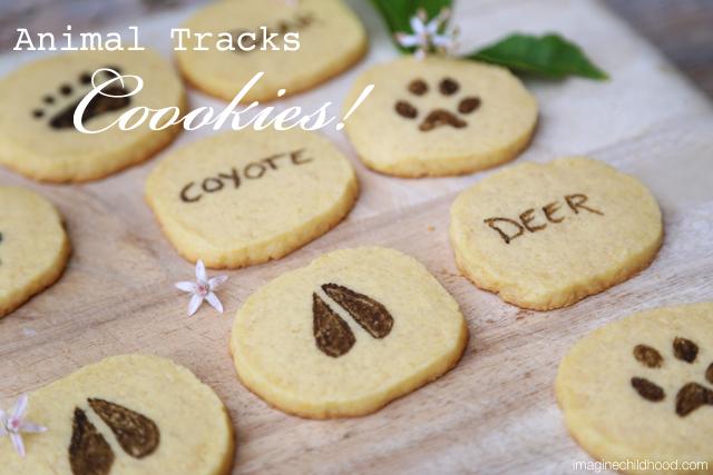 1.tracks