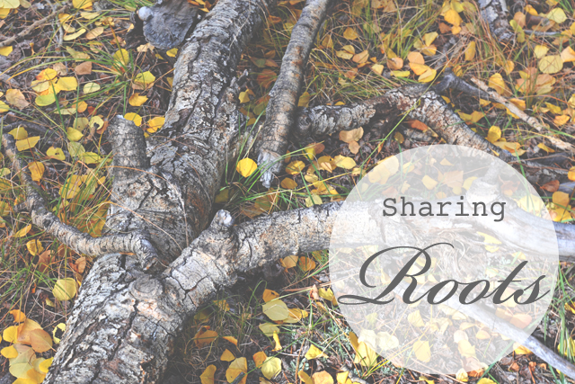 Sharing.roots