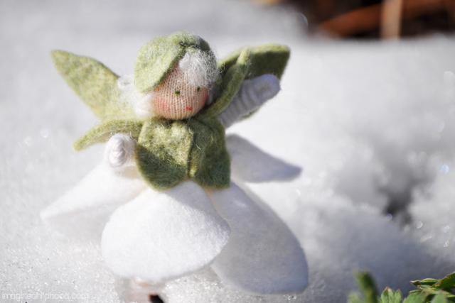 Snowdrop.1