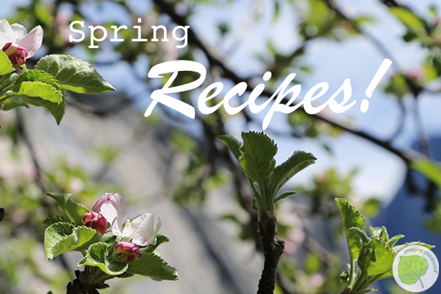 1.spring