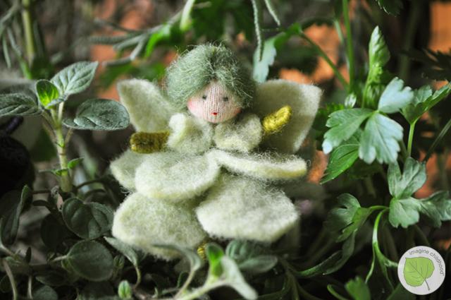 Basil.fairy